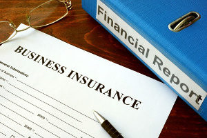 a professional liability insurance document