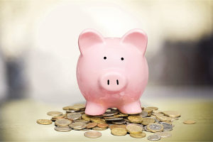 piggy bank to save up for PPO health insurance