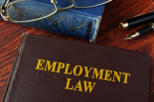 employment law book that teaches employers how to manage an EEOC complaint