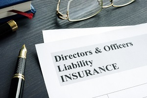 directors and officers liability d&o insurance